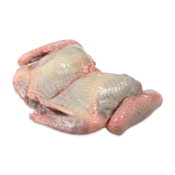 Partially Boned Squab